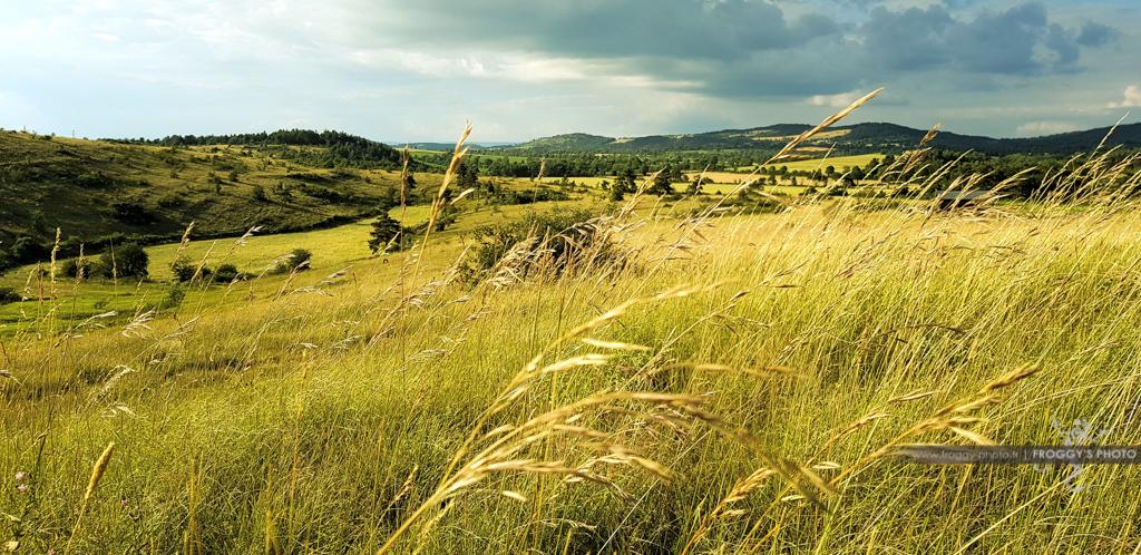 paysage-causse-massegros-191213-1024-froggys-photo